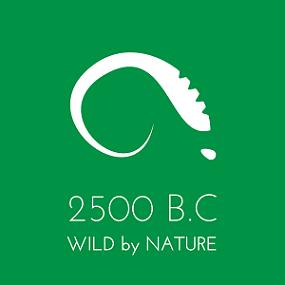 2500BC logo